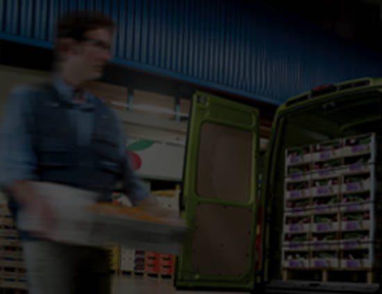 celikoglu bilgisayar afyon
